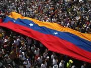 Venezuela election 2015 2016